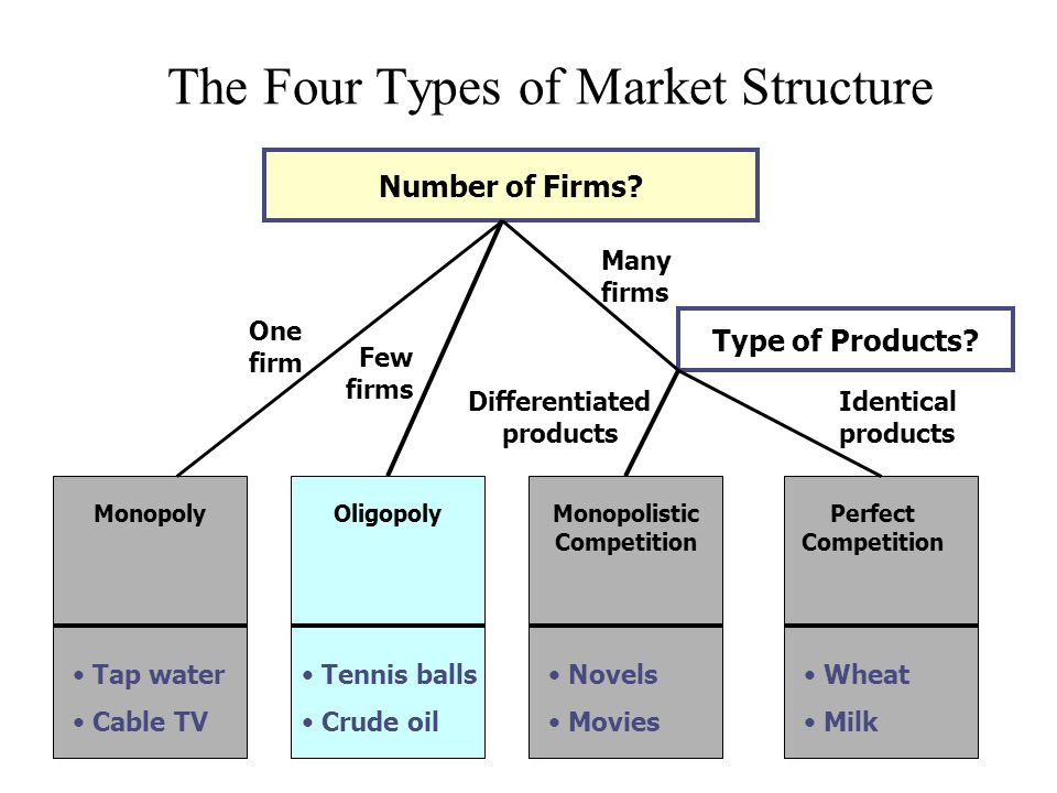 The four types of market structure infographic